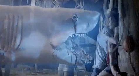 film ghost shark sharknado vs ghost shark the geekiary