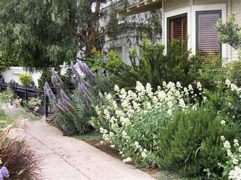 What S In Backyard by Trends In Backyard Design What S Now Hgtv
