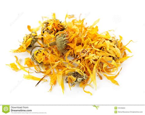 Dried Calendula Herb Flowers Stock Images   Image: 16125604