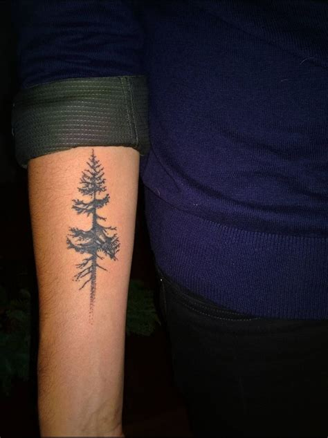 douglas fir tattoo douglas fir tree simple simple tattoos