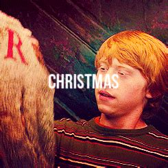 images of christmas gif happy harry potter gif find share on giphy