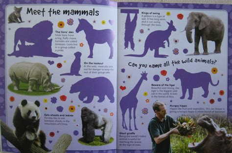 my favourite zoo sticker book