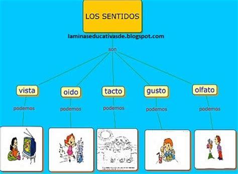 laminas educativas los 5 sentidos laminas educativas los 5 sentidos