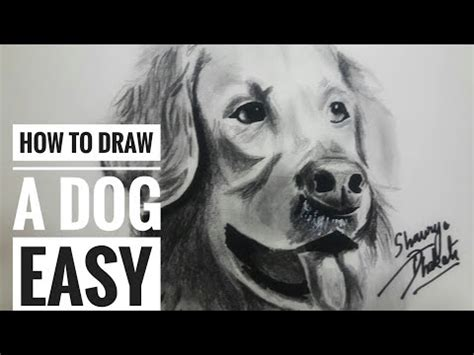 how to draw a golden retriever easy how to draw white whiskers on a golden retriever by realistic pencil drawing
