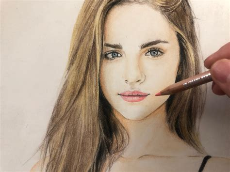 colored pencil hair hair colored pencil drawing steemkr