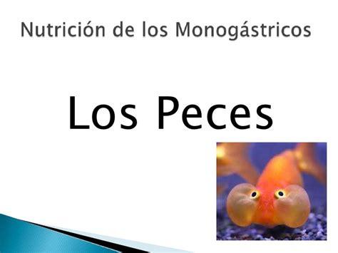 los peces de la 8483835460 nutricion de los peces