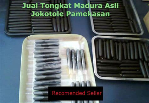 Tongkat Asli Madura Jokotole jual tongkat madura asli kualitas dari jokotole pamekasan