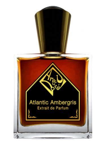 Parfum Ambergris atlantic ambergris areej le dor 233 parfum ein neues parfum