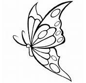 Coloriage Papillon Gratuit En Ligne  Jeu Plein &233cran
