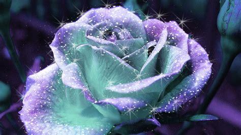 Flower,flower hd photos,flower wallpapers,flower pics