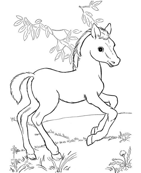 coloring pages for pony free printable horse coloring pages for kids