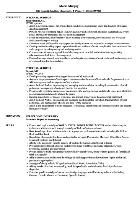 exelent internal auditor resumes vignette resume ideas