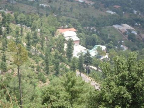 nathia gali nathia gali photos featured images of nathia gali