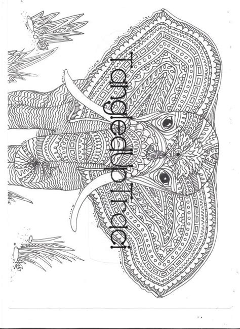intricate horse coloring pages intricate elephant coloring pages