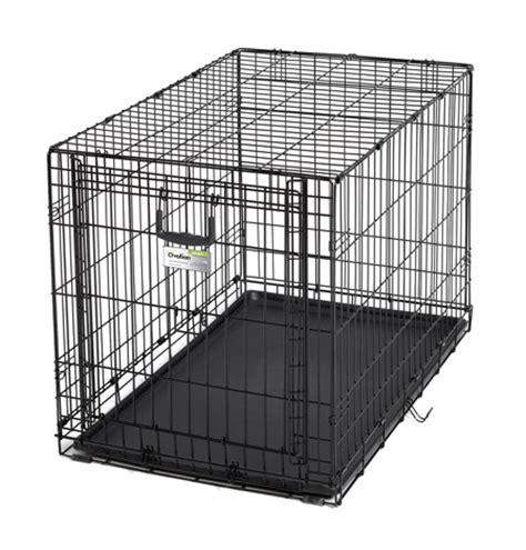 best size crate for golden retriever mackenzie golden retriever