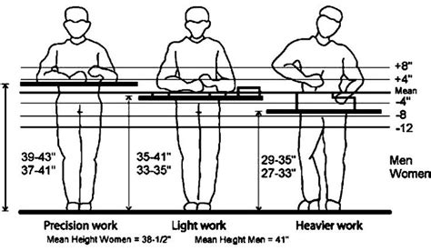 woodworking bench height reference for adjustable workbench height recommendations ergonomics pinterest