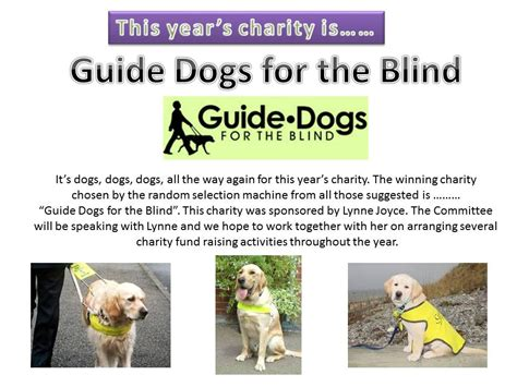 guide dogs for the blind daventry conservative club news and events