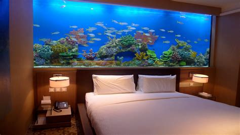 amazing home wall aquariums design ideas