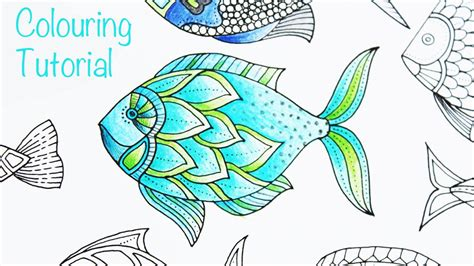 fish colors fish pictures drawings colour www pixshark images