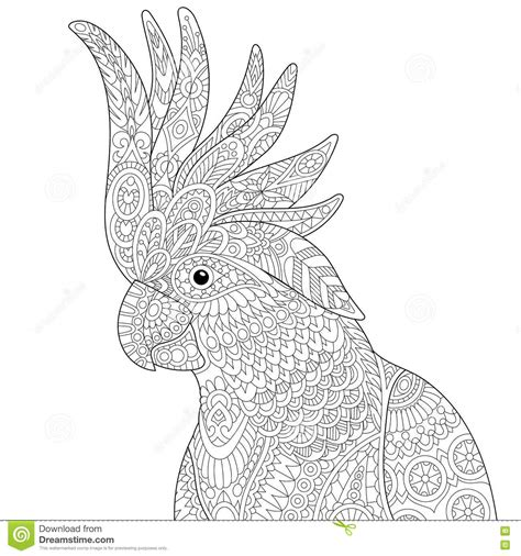 anti stress coloring book australia zentangle stylized cockatoo parrot vector