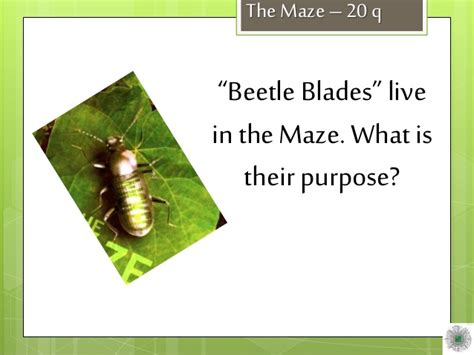 beetle blade maze runner party pinterest the o jays maze runner beetle blades www imgkid com the image kid