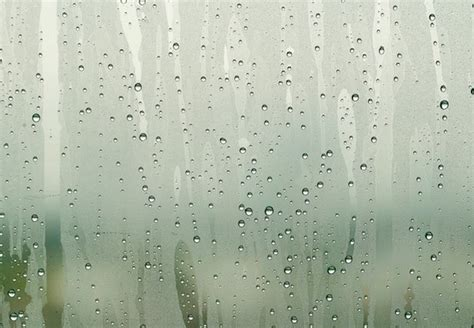 condensation on inside of house windows condensation on inside of windows bob vila radio bob vila