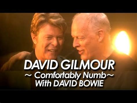 comfortably numb david bowie pink floyd david gilmour with david bowie comfortably