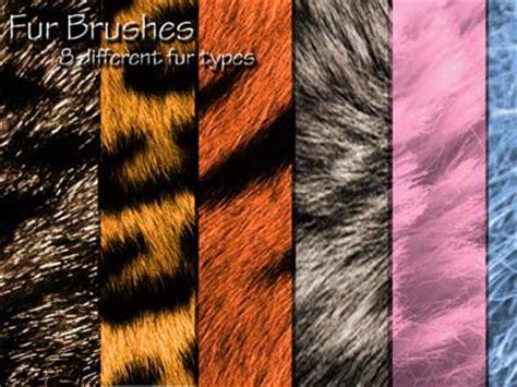 fur pattern brush 15 sets of free fur photoshop brushes designbeep