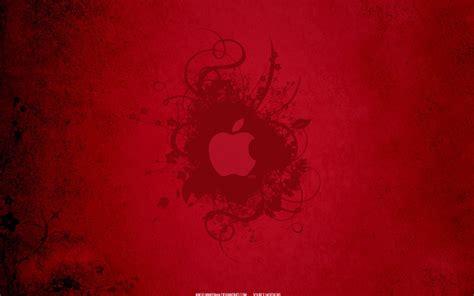 wallpaper apple red apple red hd wallpaper hd wallpaper