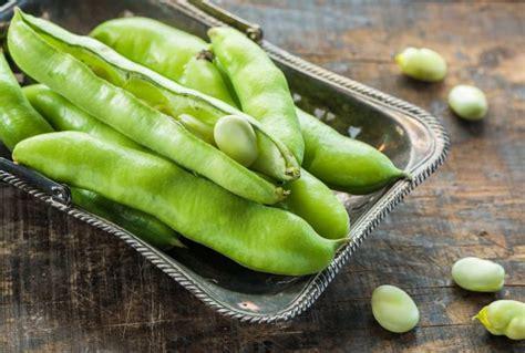 come cucinare le fave secche fresche oppure secche come cucinare le fave