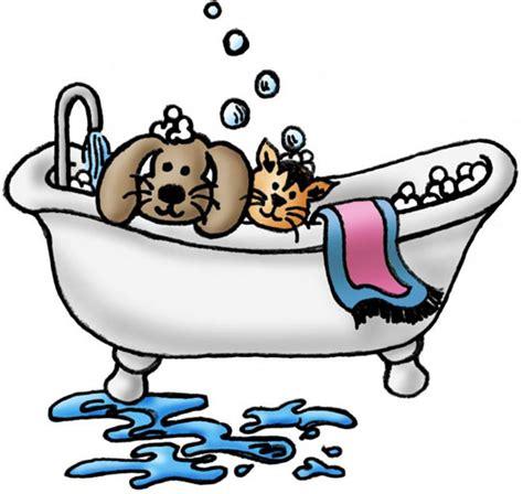 grooming nashville paw prints grooming pet grooming pet cat grooming tn