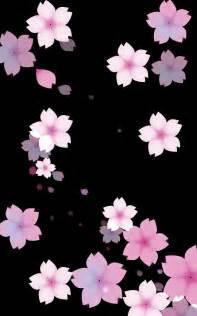 aesthetic background black cherry black background