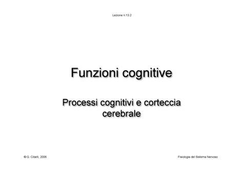 dispense fisiologia umana fisiologia umana ii funzioni cognitive dispense