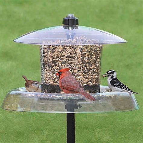 weather proof bird feeders duncraft com all weather