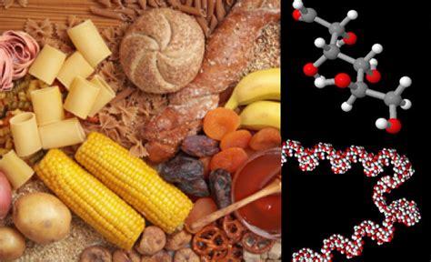 alimentos que contengan hidratos de carbono alimentaci 243 n informaci 243 n 250 til sobre la diabetes