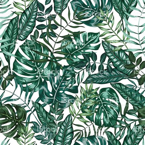 jungle pattern vector seamless vector graphical artistic tropical nature jungle