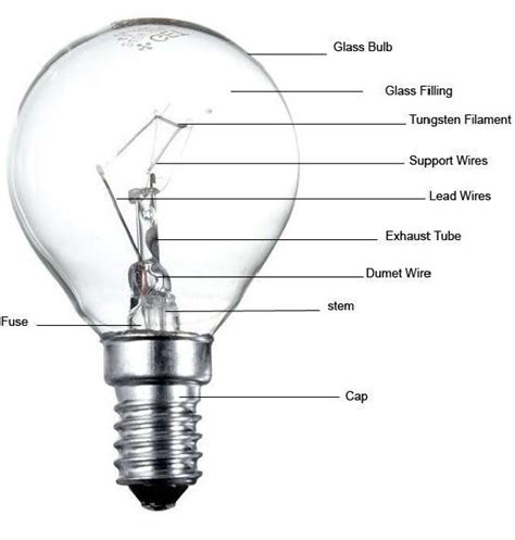 light bulb wiring diagram electric light bulb schematic get free image about