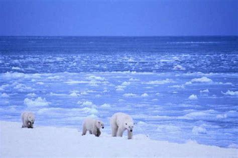 imagenes de paisajes de zonas polares ticovisi 243 n costa rica la naci 243 n polar ticovisi 243 n costa