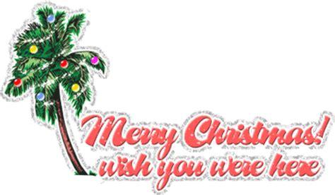 animated gif  christmas palm trees   images gifmania