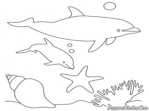 mewarnai ikan lumba lumba mewarnai gambar