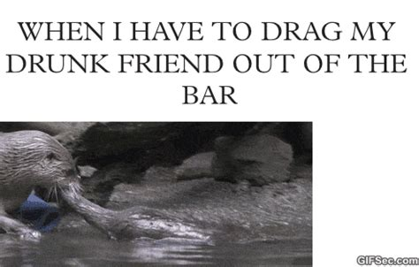 Drunk Friend Memes - funny gif drunk friend