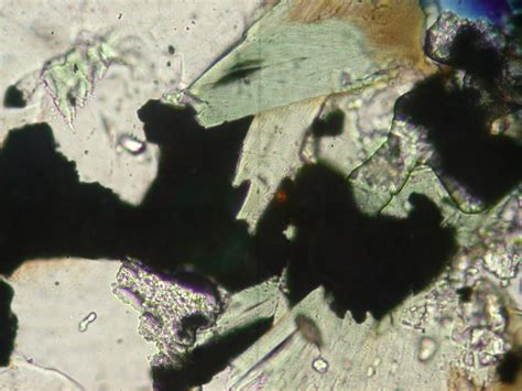 chlorite in thin section wisconsin geological natural history survey 187 ilmenite