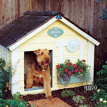 mascotas para pisos peque os tus mascotas amar 225 n estas casitas para perros peque 241 os