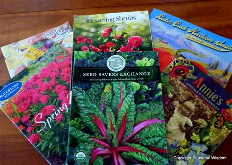 Garden Plants Catalogs by Garden Seed Catalogs Free Smalltowndjs