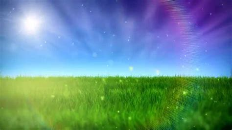 nature video background hd youtube