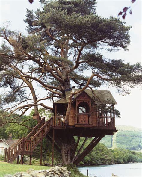 b b casa sull albero casa sull albero