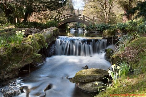 joe gilhooley photography stobo japanese water garden
