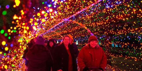 twinkling tunnel at missouri botanical gardens cool yule