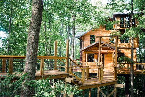 treehouse cabins in ohio by amish country lodging