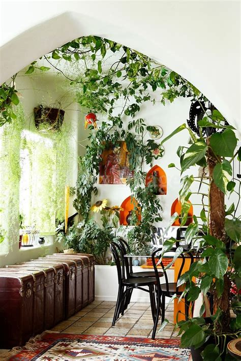 home decor with indoor plants the five types of gardening sam loves adventure